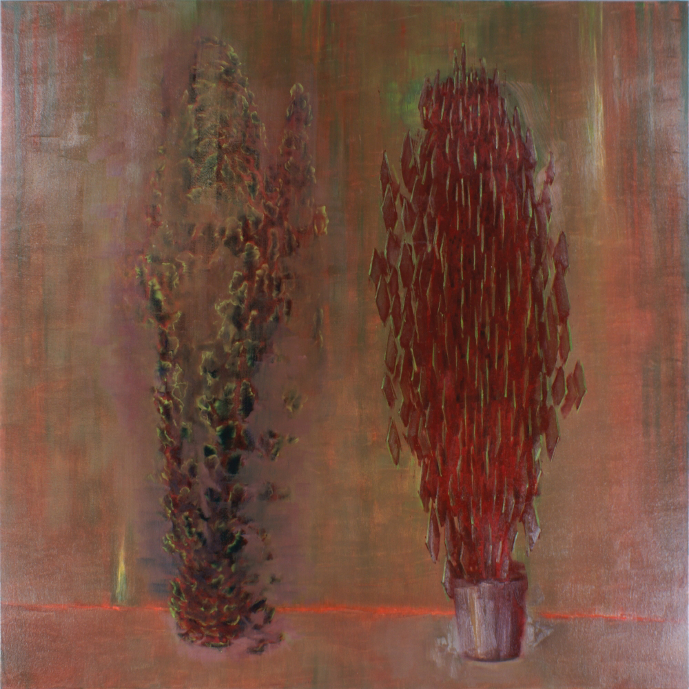 attila szucs, two indoor plants o,c. 190x190cm. 2009
