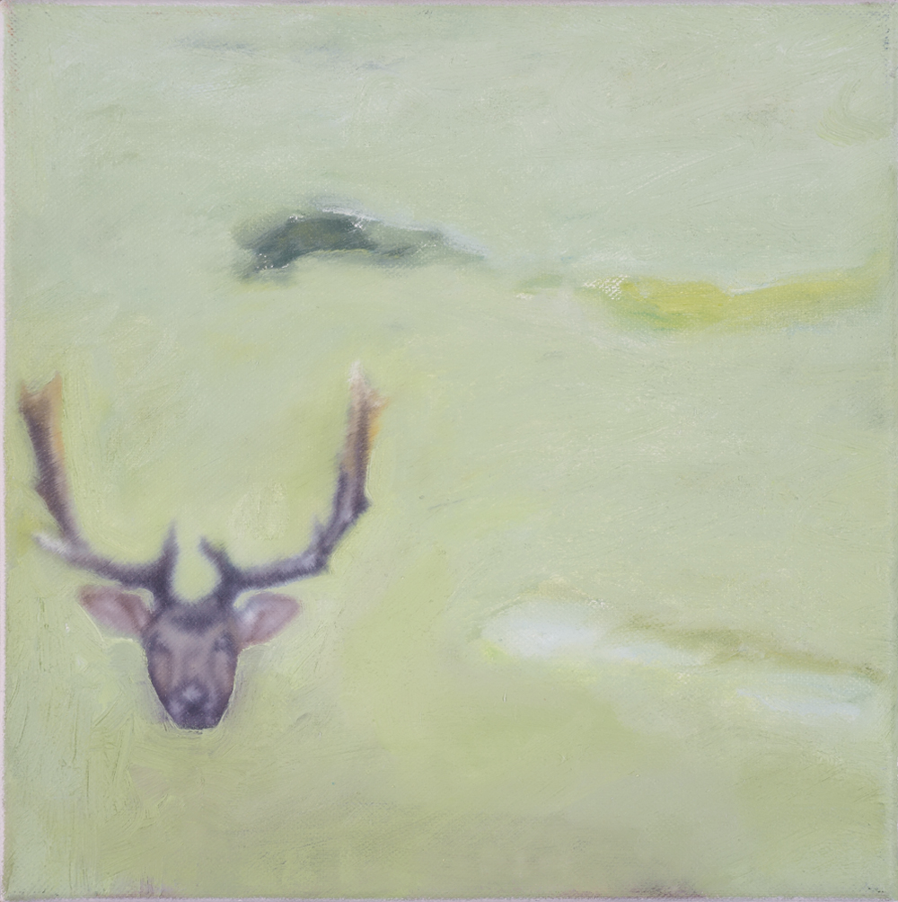 deer trophy, oil on canvas, 25x25cm. 2001